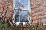 Slocum house planting detail