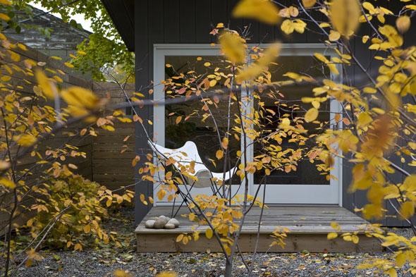 Beacon Garden, view of office from rain garden through serviceberries. Photo by Thomas Moore